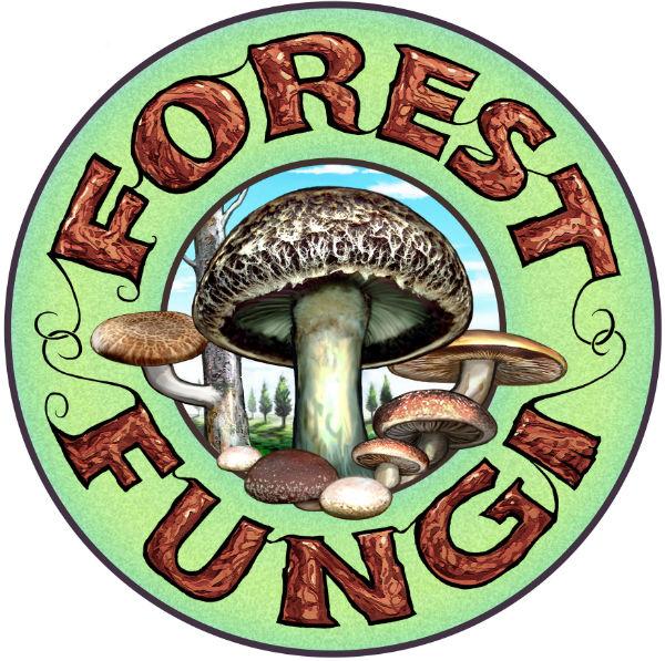 Forest Fungi Image