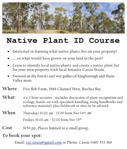 Native Plant ID Course (Thursday series) @ Five Bob Farm
